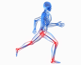 Famous Orthopedic Doctors in Hyderabad